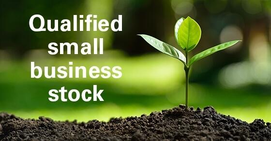 "Small plant, ""Qualified small business stock"""
