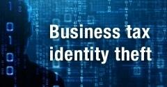 Business tax identity theft